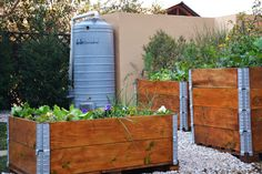 Kitchen garden, upcycle pallet planters, permeable flooring, rainwater harvesting, gardening in small spaces