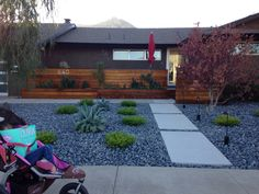 Front yard landscape large boulders sweeping mulch beds for Xeriscaped backyard design