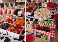 Farm Theme Birthday Party Girl Toddler 2 41, food table, deviled eggs, tractor wheels oreos, fruit and veggies: