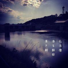 仏法僧 浸る静寂 青き朝 [山乃鯨] #photoikku #instagram #jhaiku #俳句