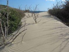 Camino de Granate a Playa Brava, Parque Tayrona cerca a Taganga Santa Marta Colombia