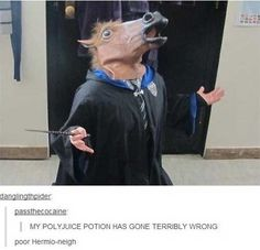 26 funniest things tumblr has ever said about Harry Potter. Best entertainment I've had all year.