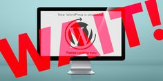 Updating WordPress may look as easy as a clicking a button, but this quick diy fix can cause big problems for your website. It's best to leave this to the pros. Your Website, Marketing Tools, Wordpress, Button, Big, Building, Easy, Buildings, Construction