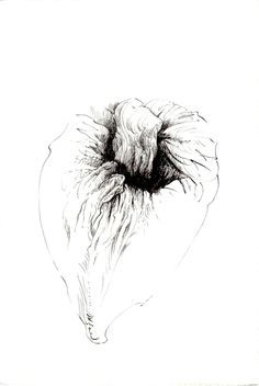 257 Seed Bank, My Works, Drawings, Artwork, Work Of Art, Auguste Rodin Artwork, Drawing, Portrait, Illustrations