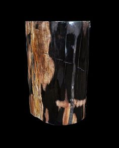 Petrified Wood Table by Stonefish