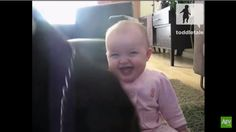 A Dog Eating Popcorn Sends This Adorable Baby Girl Into Hysterical Laughter!