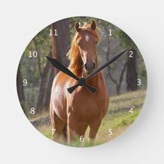 Shop Beautiful chestnut horse photo portrait, gift round clock created by roughcollie. Horse Gifts, Gifts For Horse Lovers, Lovers Gift, Portrait Wall, Horse Portrait, Pretty Horses, Beautiful Horses, Birthday Gift Photo, Wall Clock Gift