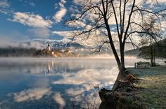 Bled, Slovenia --book, thermos of coffee, lady on my hip: done. I'm sure our stroller and twins would be welcome!
