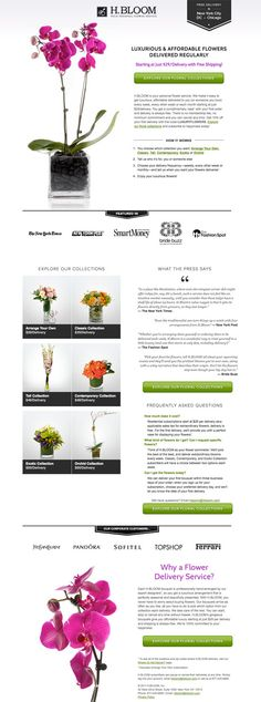 35 Beautiful Landing Page Design Examples to Drool Over [With Critiques] Best Landing Page Design, Landing Page Examples, Best Landing Pages, Flower Subscription, Page Layout Design, Flower Delivery Service, Luxury Flowers, Flowers Delivered, Web Design Inspiration
