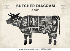 Cut of beef set. Poster Butcher diagram - Cow. Vintage typographic hand-drawn. Vector illustration