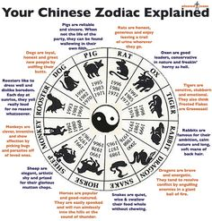"""Your Chinese Zodiac Explained - This is humorous and fun. read the descriptions for the """"joke"""" :)"""