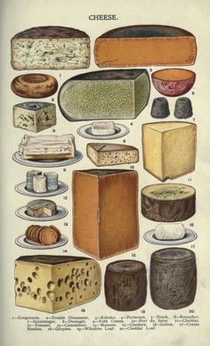 Beeton's Book of Household Management (London, Home Doctor, French Cheese, Gourmet Food Store, Kinds Of Cheese, Wine Cheese, Cheese Art, Cheese Food, Ivy House, Old Fashioned Recipes