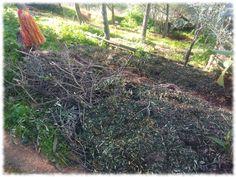 Aprovecho las pendientes para bancalar con el compostaje Fukuoka, Compost, Plantar, Organic Matter, Tree Planting, How To Build, Permaculture, Harvest, Vegetable Garden