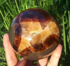 Your place to buy and sell all things handmade Septarian Stone, Dragon Skin, Yellow Calcite, Marine Environment, Flawless Beauty, Calcite Crystal, Organic Matter, Patterns In Nature, Gems And Minerals