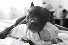 Well Protected Baby!  :-)