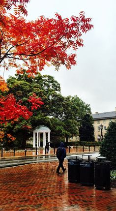 Chapel Hill in the fall. #TARgram #UNCAlumni alumni.unc.edu