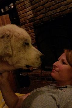 Second Chance For Dog Found In Her Dead Owner's Arms After Texas Tornado  God Bless all of you!!