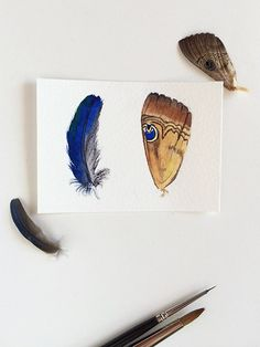Fallen - Original watercolour ACEO painting of a blue feather and a butterfly wing by Zoya Makarova