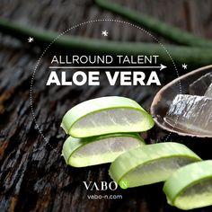 Aloe Vera ist die wahrscheinlich bekannteste Heilpflanze der Welt & wird seit Jahrtausenden verwendet. Sie wird aber nicht nur äußerlich angewendet, sondern wirkt auch von innen: Sie reguliert die Verdauung und belebt den Stoffwechsel, stärkt das Immunsystem & hilft Sportlern bei der Regeneration. Eine wahre Alleskönnerin – klar, dass Aloe Vera in VABO-N ESSENTIALS & FIERCE nicht fehlen darf! 🤩 Für unsere Produkte verwenden wir ausschließlich das Blattinnere von biologisch angebauter Aloe… Aloe Vera, Flower Pots, Pickles, Cucumber, Essentials, Food, Immune System, Metabolism, Collages