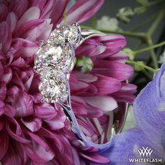 'Trellis' 3 Stone Engagement Ring.