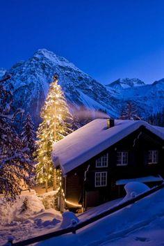 christmas tree in switzerland
