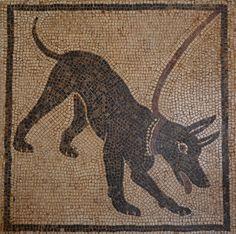 Cave Cavem mosaic from Pompeii, Naples National Archaeological Museum http://www.pinterest.com/carolemadge/roman-mosaics/