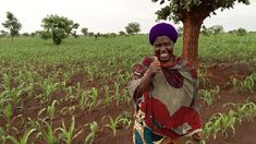 Amazing Success on Sustainable Farming and Community Projects in Malawi