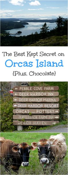 The quiet, remote, revitalizing peace of Orcas Island in the springtime may just be one of the island's best kept [tourist] secrets. (My guess is that there are plenty of uber-mysterious, Goonie-esque, islander-only secrets too, but let's just save that for the novel, shall we?) | The Good Hearted Woman