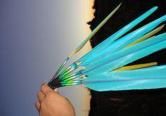 Macaw Tail Feather Peyote Fan – eBay Find of the Week