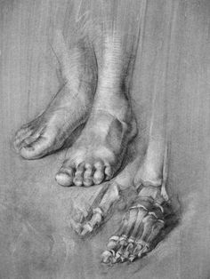 Human Anatomy Drawing, Human Body Anatomy, Human Figure Drawing, Figure Drawing Reference, Anatomy Art, Leg Anatomy, Feet Drawing, Contour Drawing, Life Drawing
