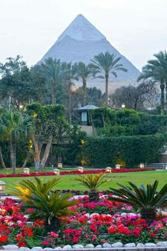 """See 2560 photos from 9904 visitors about camel, cairo, and great pyramid of cheops. """"The pyramids don't look that far from the road, but they're. Places To Travel, Places To Go, Places In Egypt, Kairo, Great Pyramid Of Giza, Visit Egypt, Pyramids Of Giza, Egypt Travel, Thinking Day"""