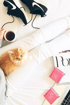 .running, tea, cats, Saturday morning perfection.