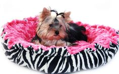 This bed is perfect for any diva pup! Minky Couture Doggie Bed Zebra Print Black by OnePoshPup of Etsy.