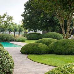 cloud pruned topiary, garden by Tuinonderneming Monbaliu BVBA