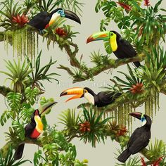 """""""Toucans and bromeliads - canvas background"""" Posters by Iker Paz Studio 