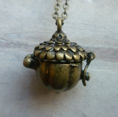 Acorn locket - for mr I loose teeth all the time - squirrel enthusiast