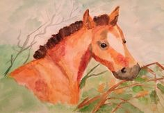Horse. Water color.