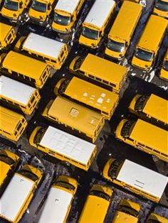 Bright yellow school buses are tightly crammed into a lot in Coney Island.