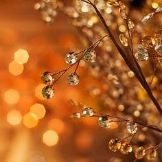 Seasonal sparkle.