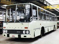 Ikarus 242 '1969–70 Busses, Transportation, Trucks, Train, Cars, Vehicles, Tourism, Public, History