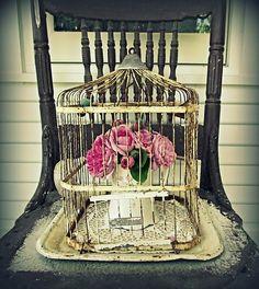 Using a birdhouse as a clematis trellis! Description from pinterest.com. I…