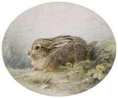 Sadness and classic art, heaveninawildflower: Hare by Ludwig Beckmann ...