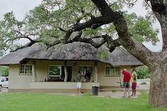Kruger National Park South Africa - our lodge