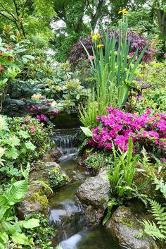 Natural Man Made Water Features #waterfeatures