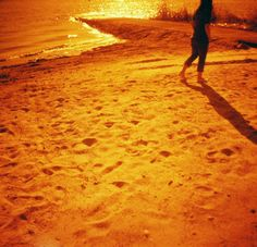 redscale by the lake