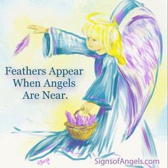 77 Best White Feathers Every Where Images Angels Feather
