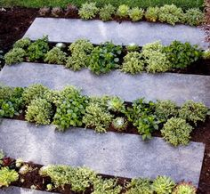 greencube garden and landscape design, UK: greencube finishes garden in Loughton Essex