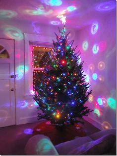 1000+ images about Cool Christmas Trees on Pinterest ...