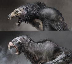 View an image titled 'Wulver Werewolf Art' in our God of War art gallery featuring official character designs, concept art, and promo pictures. Monster Concept Art, Fantasy Monster, Monster Art, Creature Concept Art, Creature Design, Creature Drawings, Animal Drawings, Drawing Animals, Arte Horror