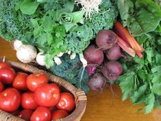 Nutrition in Cancer Treatment